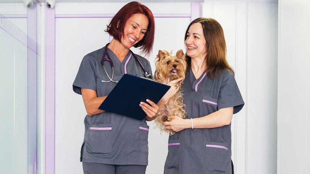 Veteriner klinik yönetiminde insan kaynakları