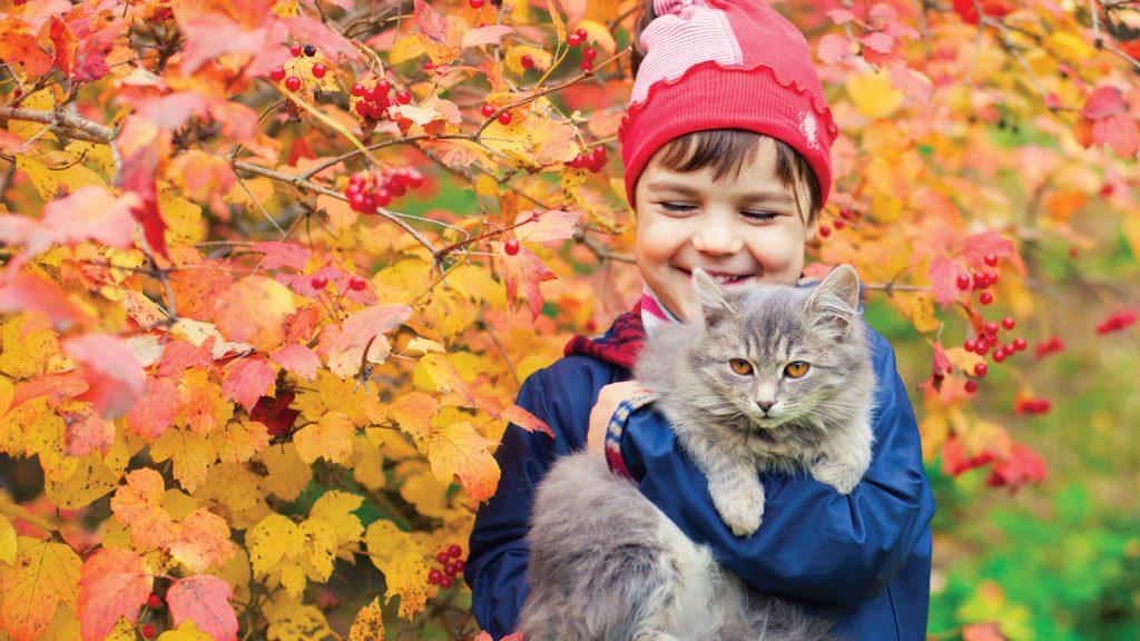 Kedilerde en sık karşılaşılan nematodlar