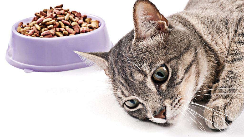Kritik bakım hastaları için uygun diyet profilinin belirlenmesi