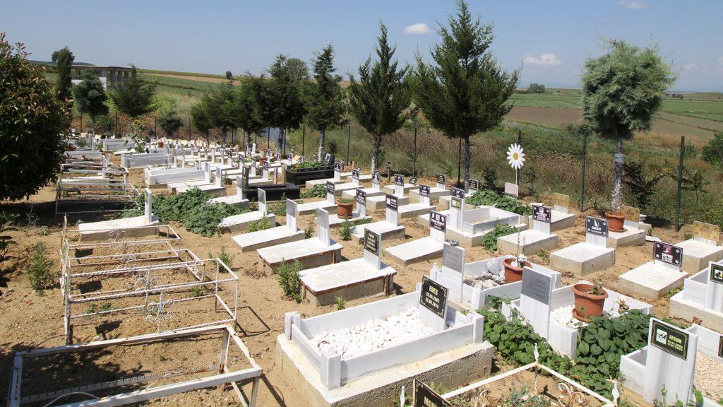 Türkiye'nin ilk pet mezarlığı; Huzur Yuvası…